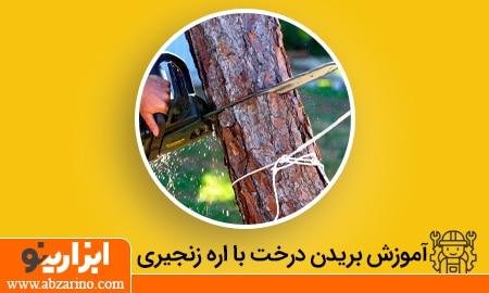 بریدن قطع درخت با اره زنجیری
