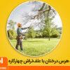 آموزش هرس درختان با استفاده از علف تراش چهارکاره